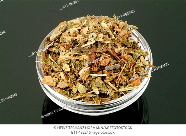 Medicinal plant, Common dandelion, Taraxacum officinale or Leontodon officinale, leaves, cut, cutted, dry, dried, medicinal use and tea