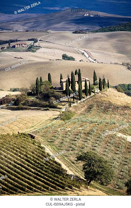 Distant view of farmhouse in agricultural landscape, Siena, Valle D'Orcia, Tuscany, Italy