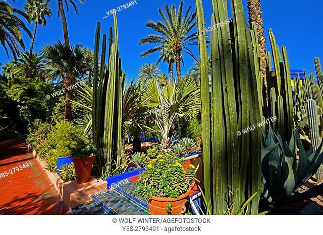 Jardin Majorelle, Marakesh, Morocco