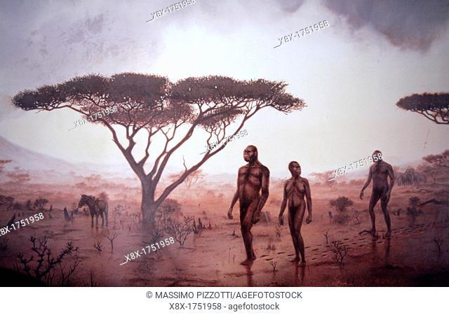 Cradle of Mankind at Olduvai Gorge and Archaeological Museum, Ngorongoro, Tanzania