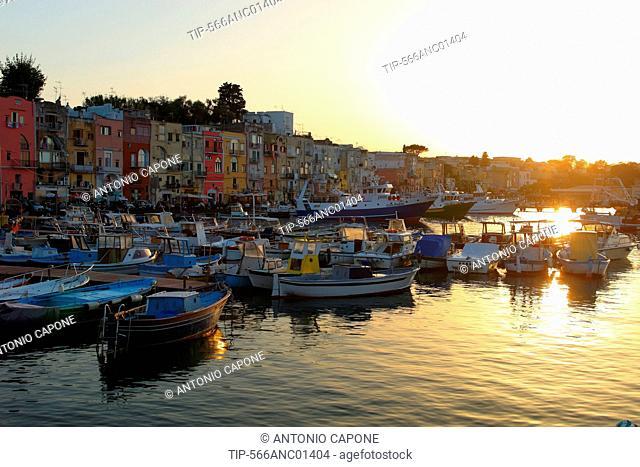 Italy, Cmpania, Procida, Marina Grande harbour at dusk