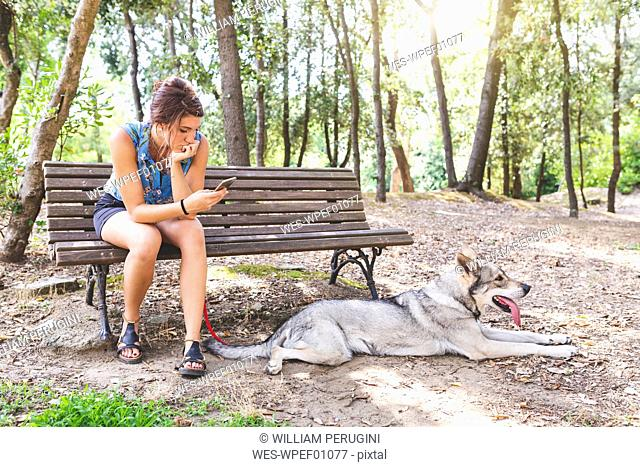 Young woman sitting on a bench in the woods looking at cell phone while her dog lying on the ground