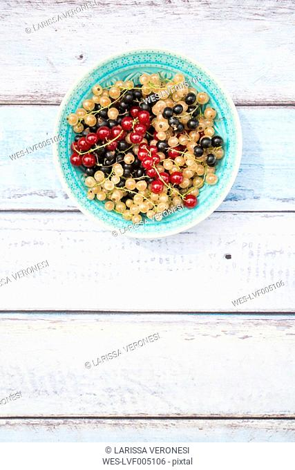 Bowl with mix of black, red and white currants