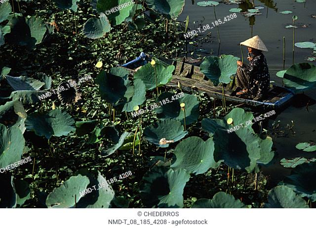 High angle view of a person sitting in a boat, Vietnam