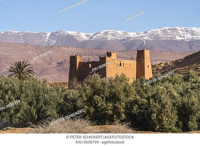 Kasbah at the Dades Gorge, Boumalne, Kingdom of Morocco, Africa