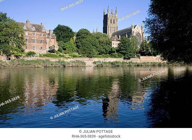 Kleve Walk with Cathedral on East bank of River Severn, Worcester, Worcestershire, England, United Kingdom, Europe