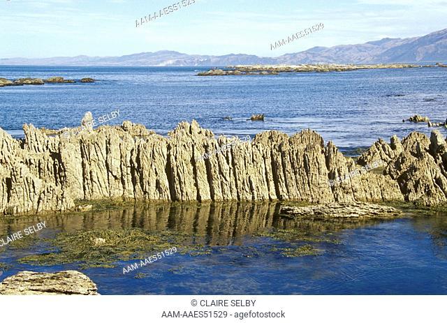 Limestone Formations along coastal Walkway, Kaikoura, Marlborough, New Zealand
