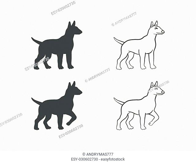 dog in different poses on an isolated background
