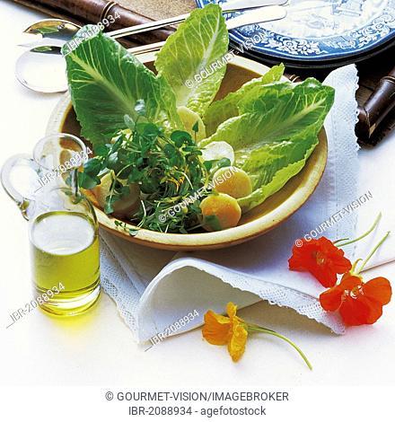 Watercress salad with parsnips, United Kingdom