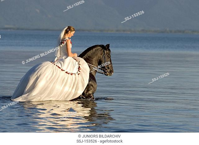 bride on Pure Spanish-bred horse in water