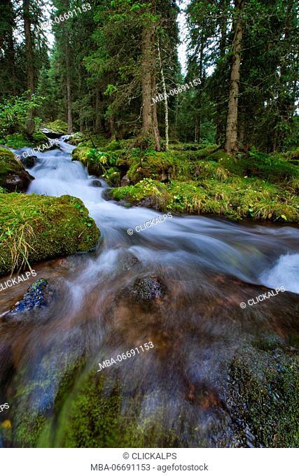 Europe,Italy,Trentino,Dolomites,Fassa Valley. Stream of water