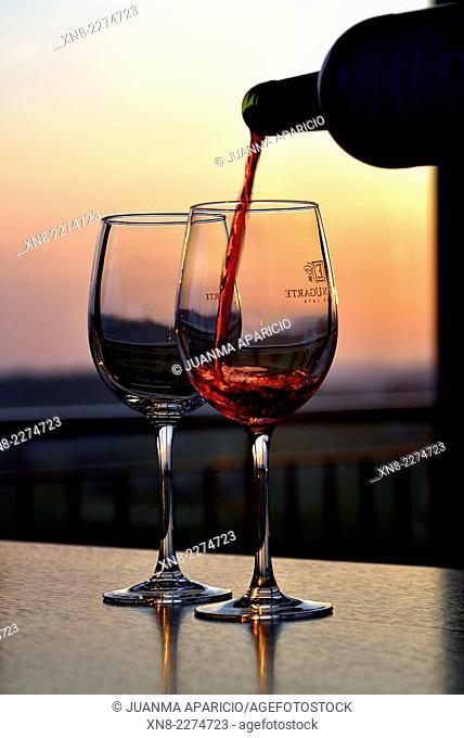 Glass of wine in the Hotel Heredad de Ugarte, Laguardia, La Rioja, Alava, BAsque Country, Spain, Europe