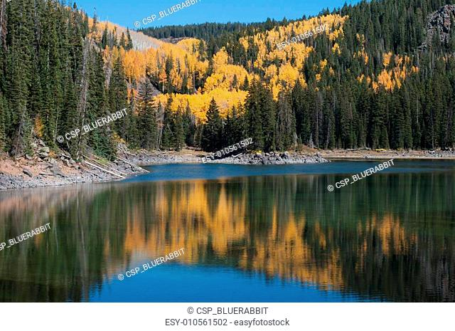 Autumn on the Grand Mesa