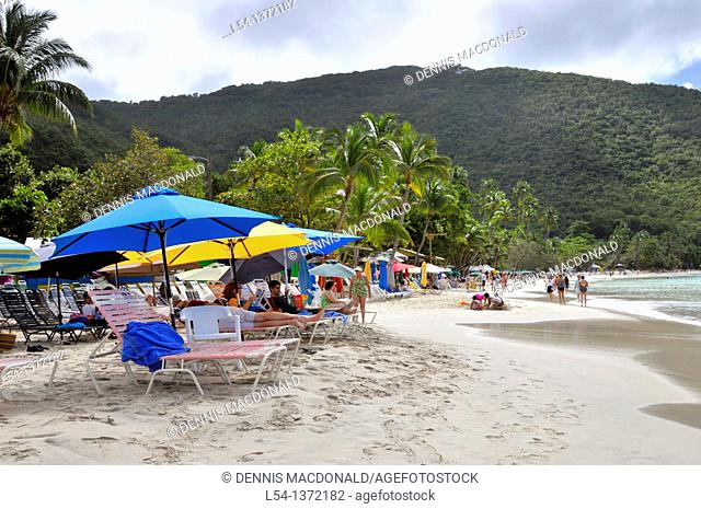 Guests under umbrellas Cane Garden Bay Beach Tortola BVI Caribbean Cruise