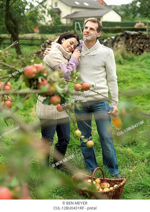 Man and woman picking apples cuddling