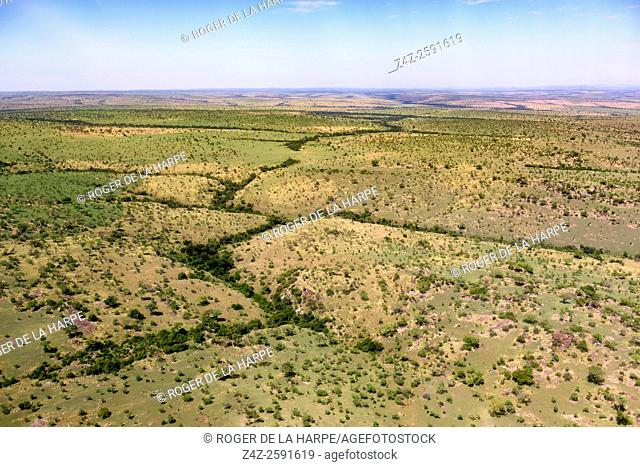 Aerial view. Serengeti National Park. Tanzania