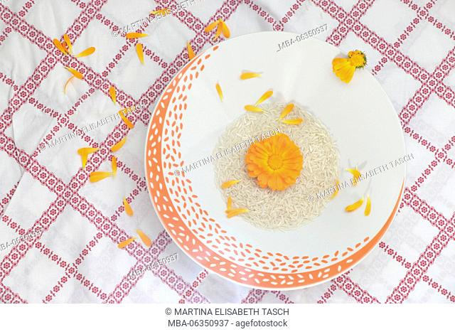 Marigold on coloured plate with rice