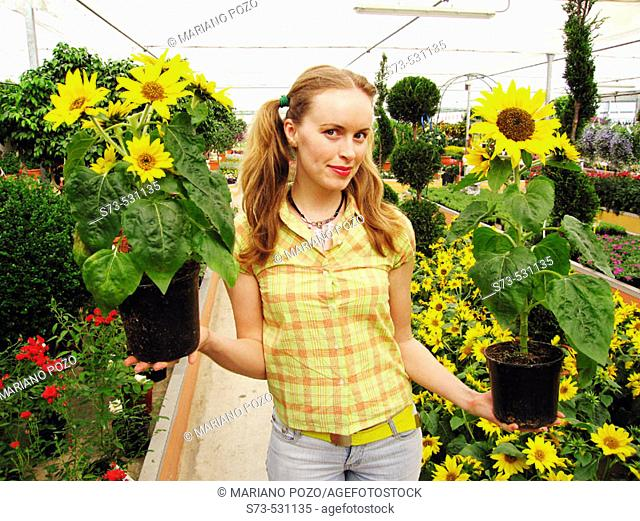 27 year old woman in greenhouse with sunflowers
