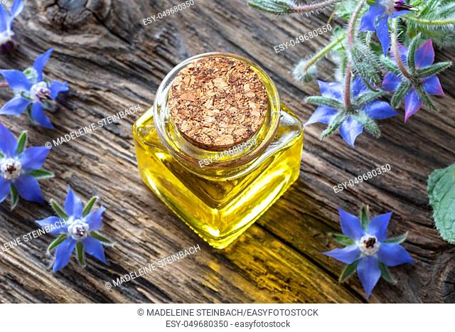 A bottle of borage oil with fresh blooming plant on a table
