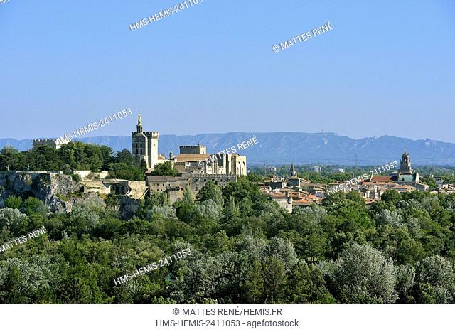 France, Vaucluse, view over Avignon from Villeneuve lez Avignon