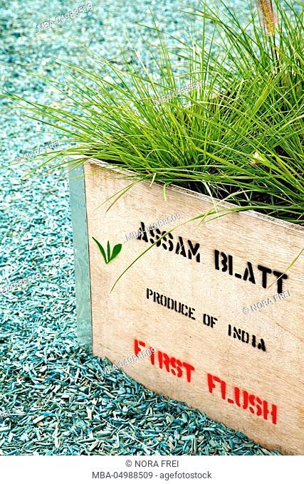 Tea box, plants, grass, flora
