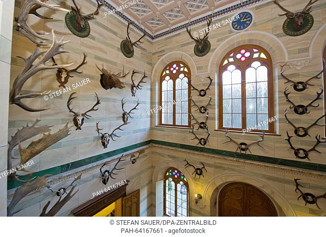 Hunting trophies hang attached from the walls of a central hall in the hunting seat of Granitz, near Sellin on the island of Ruegen, Germany, 23 November 2015