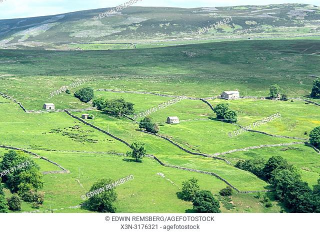 The rolling hills and valleys of Yorkshire , UK, are filled with vibrant green vegetation and sprawling stone walls