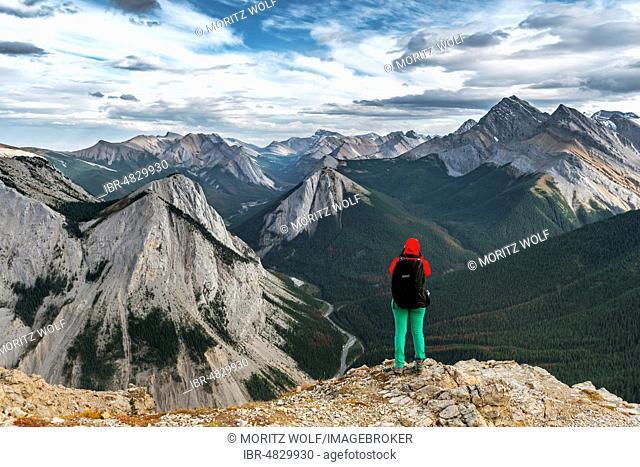 Female hiker views from summit over mountain landscape, panoramic view, Sulphur Skyline Trail, Nikassin Range, Jasper National Park, British Columbia, Canada