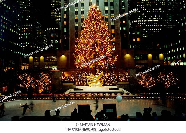 Newman Christmas Trees.Usa New York City Christmas Tree At Rockefeller Center