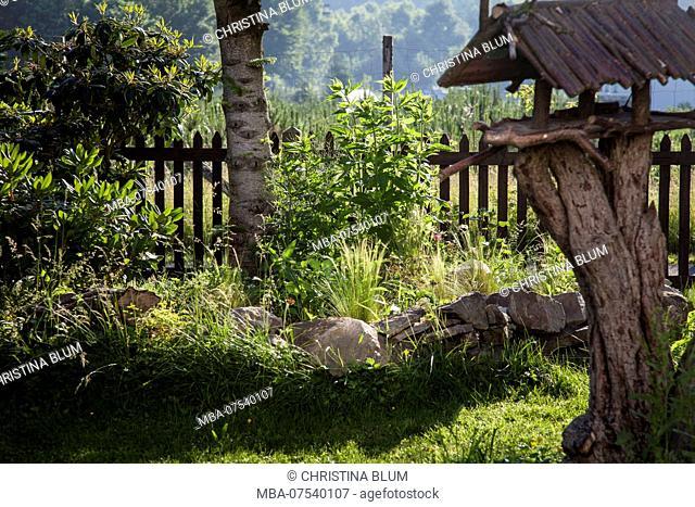 Idyllic garden with bird house and herb bed, Hochsauerland, Sauerland, North Rhine-Westphalia, Germany