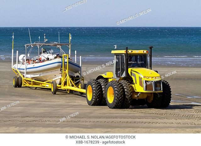 A commercial whale watching boat being launched across the beach at low tide by tractor in Puerto Pyramides, Golfo Nuevo, Peninsula Valdez, Argentina