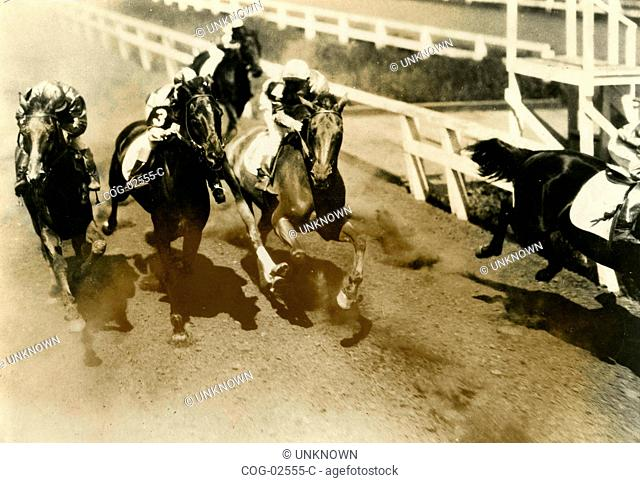 A scene of horse races from the movie Sweepstakes