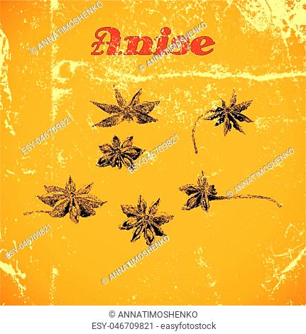 Hand drawn vintage anise isolated on yellow distressed grunge background