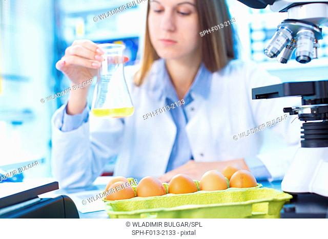 Female scientist testing egg yolk in a laboratory