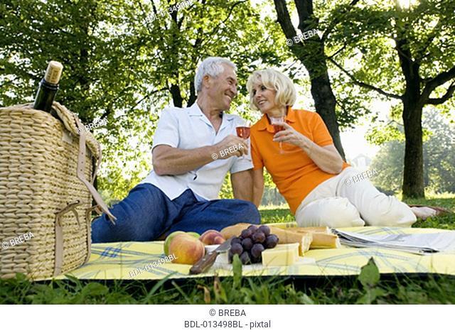 mature couple raising their glasses having picnic in park