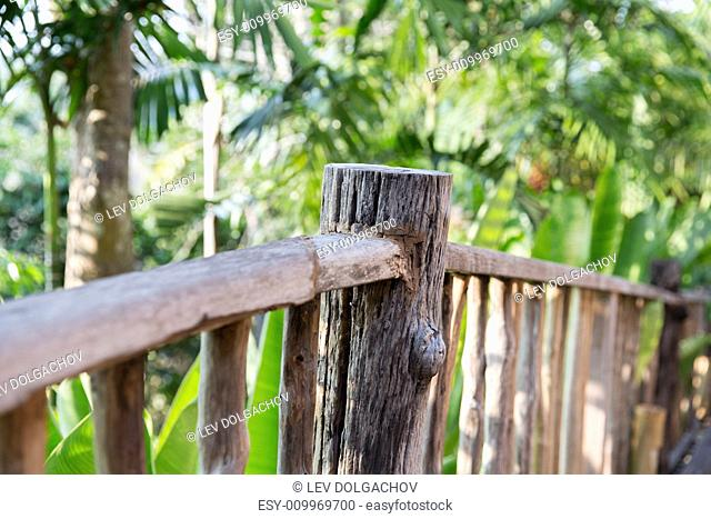 nature, travel, adventure and tourism concept - wooden fence at tropical woods or park