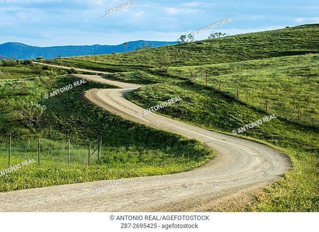 Mestanza. Valle de Alcudia y Sierra Madrona Natural Park, Ciudad Real province, Castile La Mancha, Spain