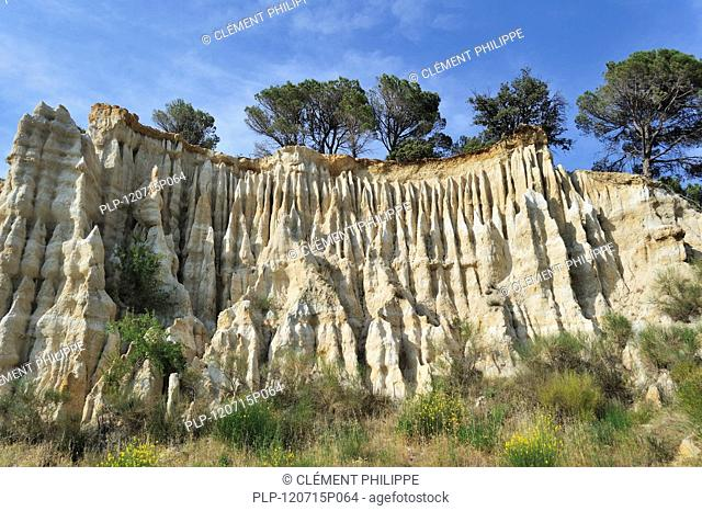 Strange rock formations created by water erosion at the Orgues d'Ille-sur-Têt in the Pyrénées-Orientales, Pyrenees, France