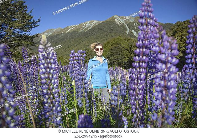 Traveler woman in field of wildflowers called Russell Lupin flowers in New Zealand