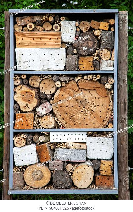 Insect hotel for solitary bees and artificial nesting place for other insects / invertebrates offering nest holes in hollow stems, bricks and wood blocks