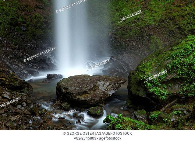 Niagara Falls from Niagara Falls Trail, Siuslaw National Forest, Oregon