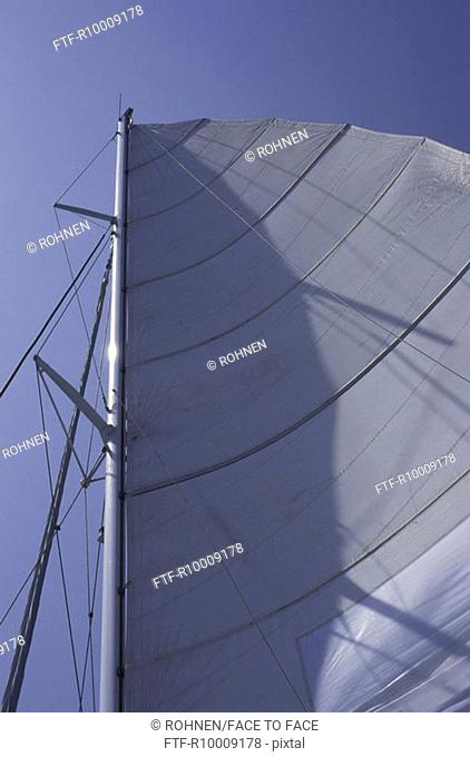 Sail in the wind