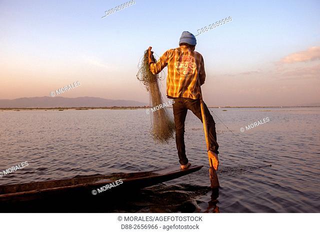 Myanmar (Burma), Province Shan, Inle Lake, Nyaungshwe Village, Intha fisherman fishing in the lake, net fishing