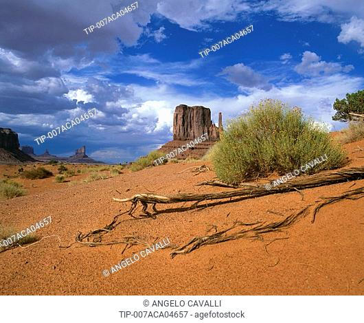 USA, Arizona, Monument Valley, Navajo Lands, The Mittens