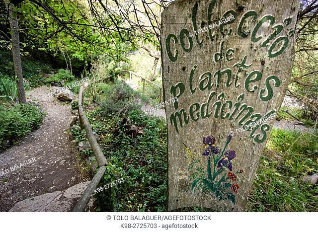 Santuario de LLuc, jardin botanico, Escorca, Sierra de Tramuntana, Majorca, Balearic Islands, Spain