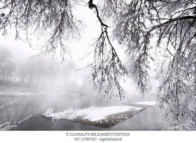 Plain Piedmont, Piedmont,Turin, Italy. Hoar frost trees on the Po river