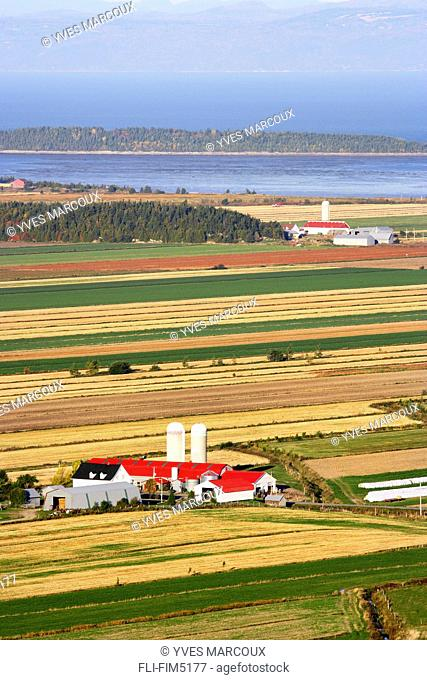 Farmland and St. Lawrence River at Sunrise, Kamouraska Village, Bas-Saint-Laurent Region, Quebec