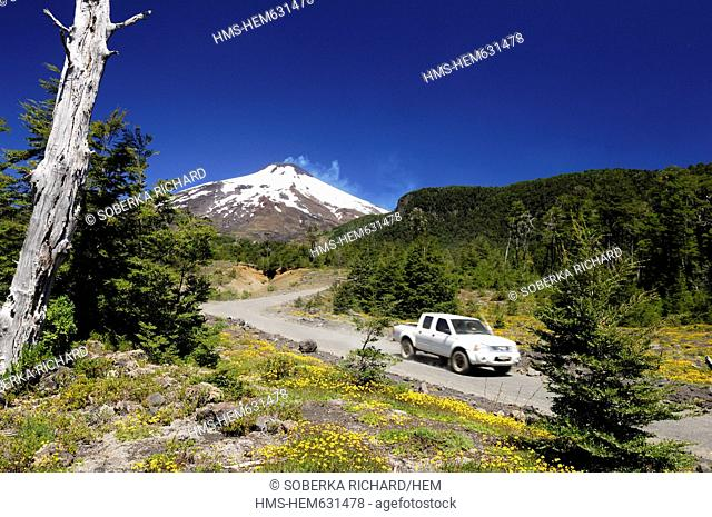 Chile, Los Lagos region, Araucania province, Villarica, 4x4 track with dead tree in front of the Villarrica volcano in the snow covered
