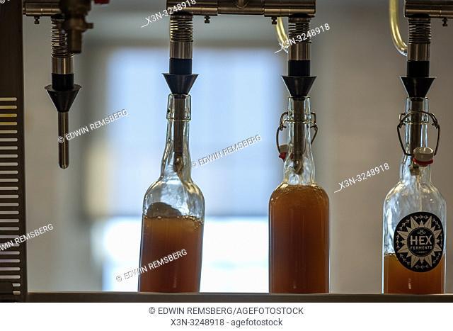 Bottle filling machine fills glass bottles full of kombucha, Baltimore, MD
