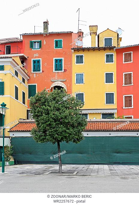 Color Houses